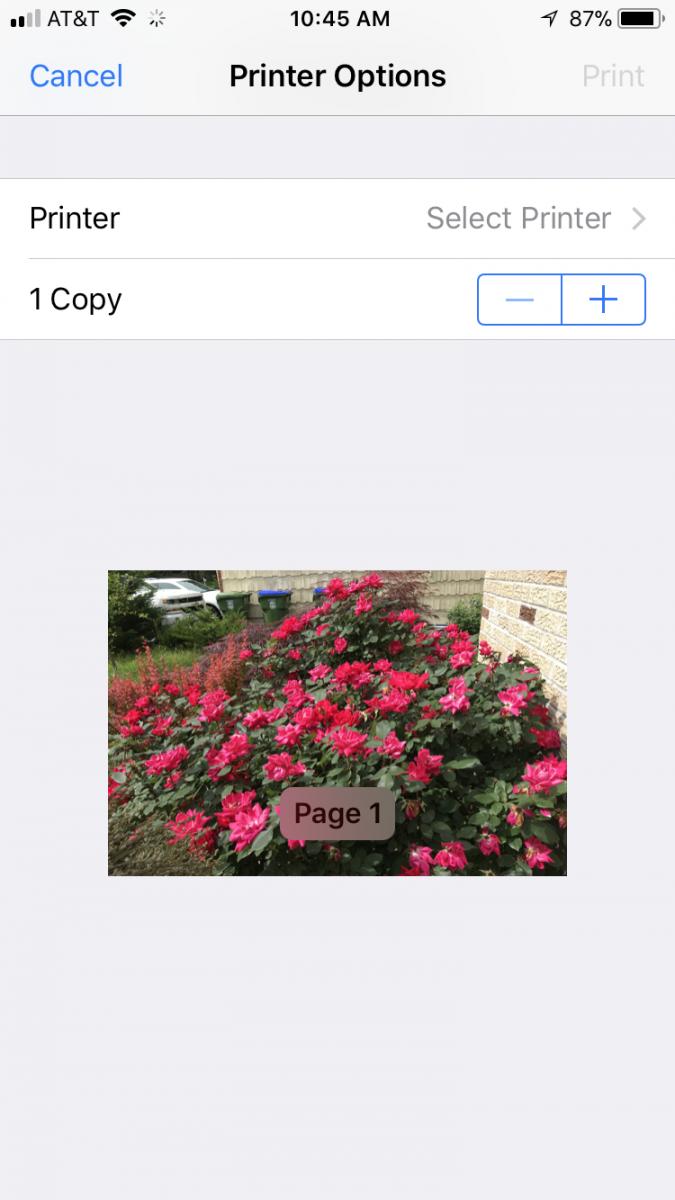 papercut ios print options
