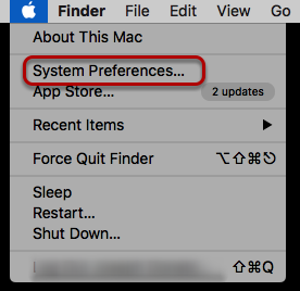 Selecting System Preferences in the Apple Menu